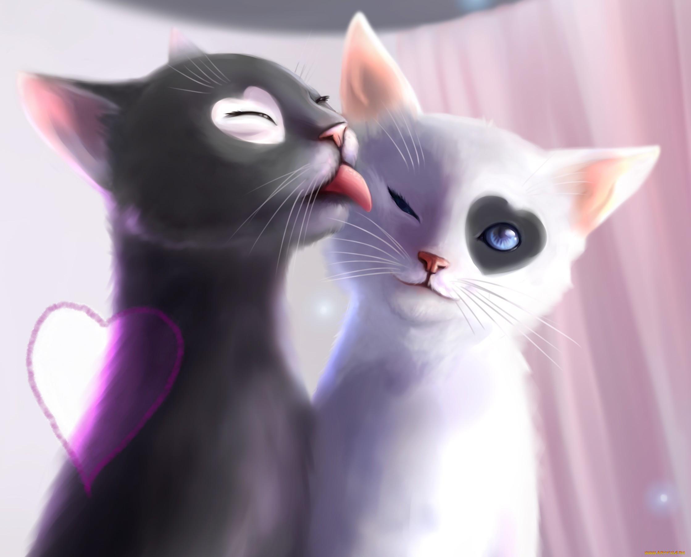 картинки кошка целует кота мульт индивидуального стиля